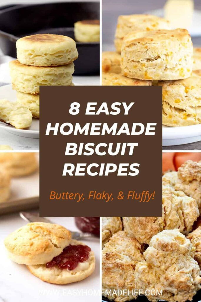 9 Easy Homemade Biscuit Recipes